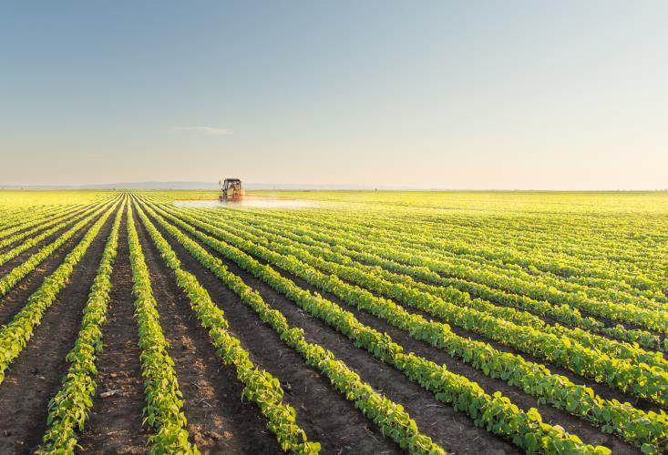 drenagem-agricola-original